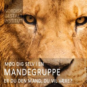MANDEGRUPPE 300